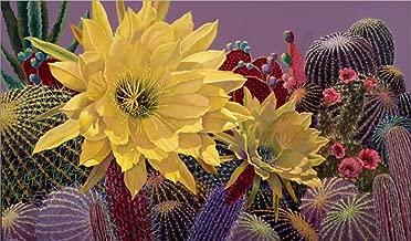 Cindy's Garden by Sharon Weiser Laminated Art Print, 31 x 18 inches