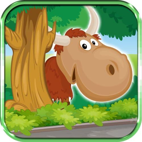 Visit Herd