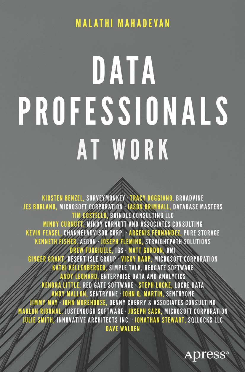 Data Professionals At Work (English Edition)