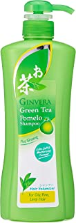 Ginvera Green Tea Shampoo Oily (P), 750 g