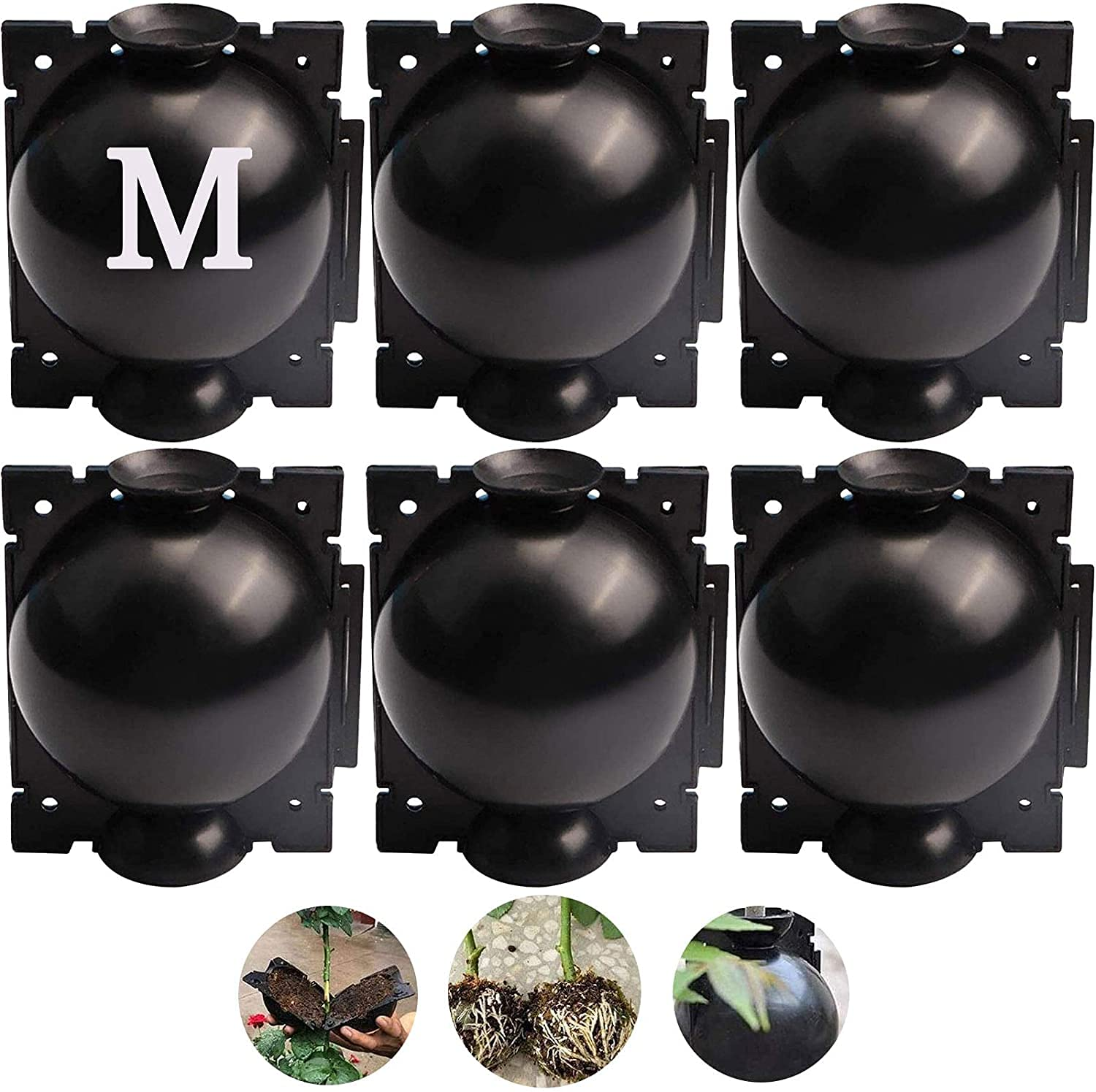 Max 69% OFF Gedeng Plant Rooting Grow At the price Box Ball High Reusable P