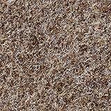BODENMEISTER BM73501 Teppichboden Nadelfilz Nadelvlies Meterware Objekt beige braun 200 cm und 400 cm breit, verschiedene Längen, Variante: 5 x 2 m