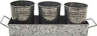 Galvanized Metal Garden Pots with Tray Set of 4 - Bucket Planter Pail - Flower Pots x3, Tray x1 - Garden Planters Indoor/Outdoor