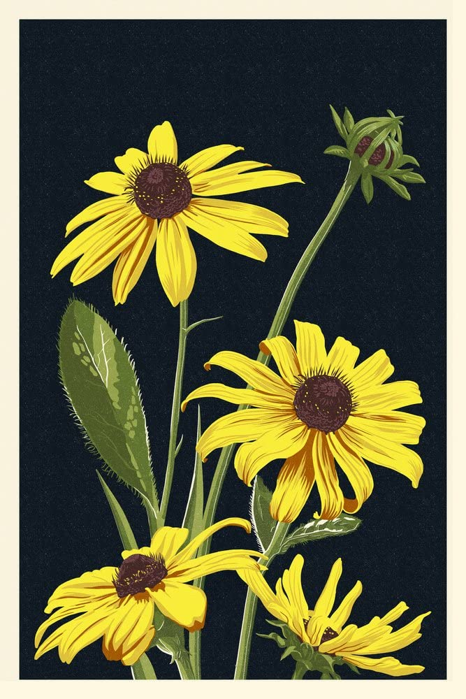Black Eyed Susan - OFFicial site Letterpress Gallery Raleigh Mall Giclee Wall 36x54 Print