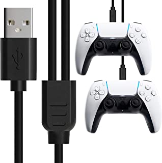SPLIT USB Type C Cable, 10FT (3M) Fast Charging USB Type A to dual USB C Cable by Foamy Lizard - For XBox Series X, S, Eli...