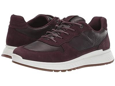 ECCO ST.1 Sneaker (Fig/Fig) Women