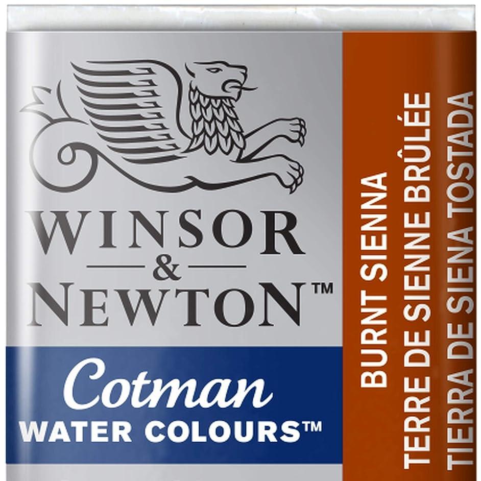 Winsor And Newton Cotman Half Pan Burnt Sienna