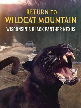 Return to Wildcat Mountain: Wisconsin's Black Panther Nexus