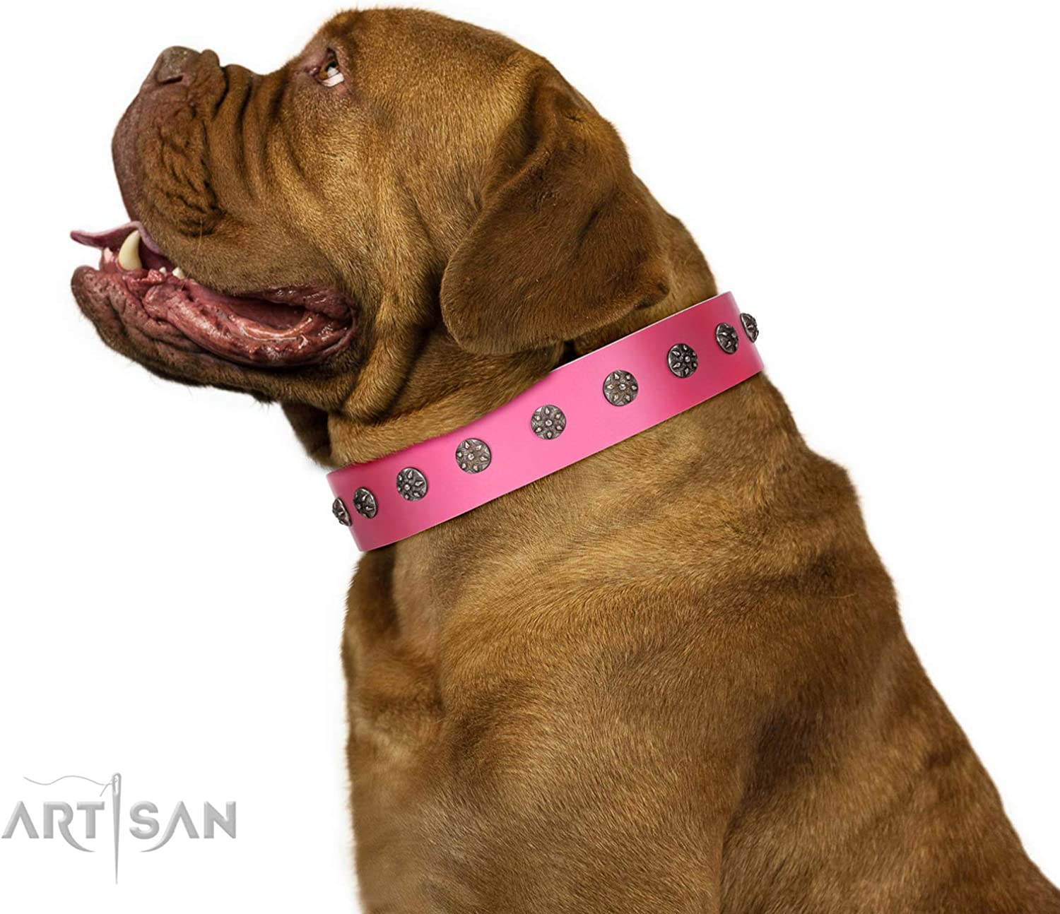 FDT Artisan 35 inch Pink Leather Dog Collar with SilverLike Flowers  Pink Blooming  1 1 2 inch (40 mm) Wide  Gift Box Included