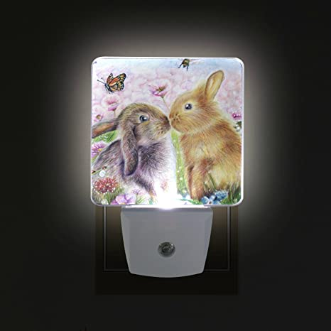 Download Giovanior Kiss Hares Rabbit Bunny Butterfly Painting Plug In Dusk To Dawn Light Sensor Led Night Light Wall Light For Bedroom Bathroom Hallway Stairs Energy Efficient Amazon Com