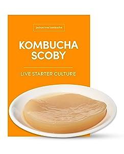 Kombucha Scoby and Starter Tea, Live Kombucha Starter Liquid, Kombucha Tea Starter Culture, Brew Kombucha at Home, Makes a 1 Gallon Batch of Kombucha, No Vinegar, No Artificial Flavors