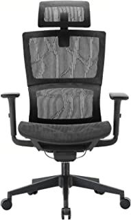 XUER Ergonomic Office Chair with Cozy Lumbar Support and Adjustable 3D Armrest, Computer Desk Chair with Mesh Seat and High Back, Multifunction for Relaxation (Black) …