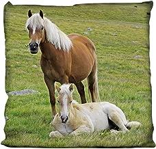 Herding Kissen Dekokissen Kinderkissen Pferde Pferd Schimmel  40 x 40 cm neu