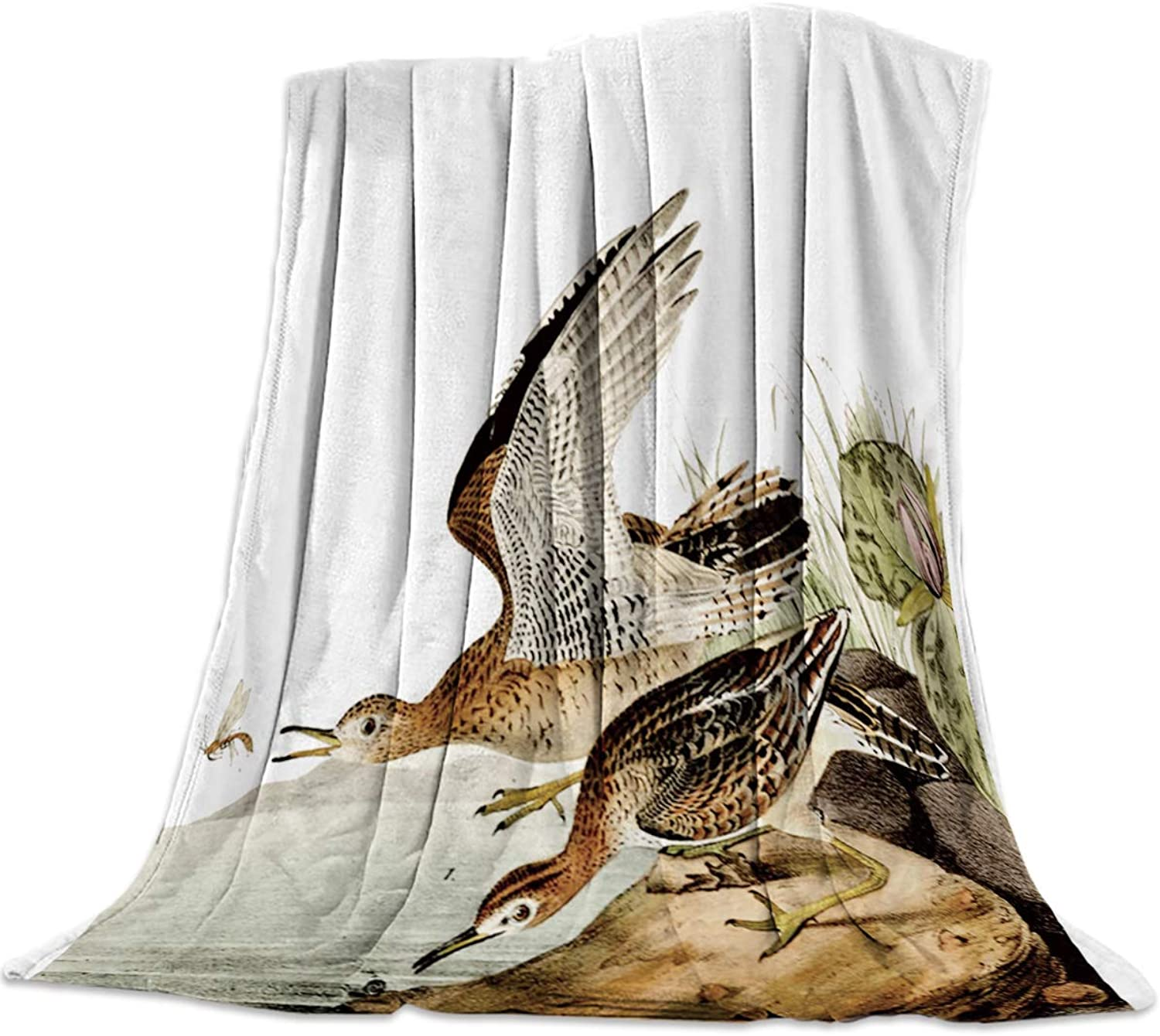 YEHO Art Gallery Super Soft Blanket Flannel Fleece Bed Throw-blankets Home Decor,The Bartramia longicauda Birds with Dragonfly Hand Painting Warm Blankets for Sofa Couch Bedroom Living Room,39x49 Inch