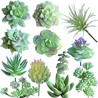 MAXZONE Fake Succulents 12pcs Artificial Succulents Picks Unpotted Faux Succulent Assortment in Flocked Green in Different Type Different Size Succulents Echeveria Agave Floral (1 -Green)