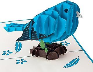 b8120ee477df12 Blauer Vogel hochwertiges Geschenk für Frauen und Männer detailreich und  lebendig - Lustiges und kleines Geschenk