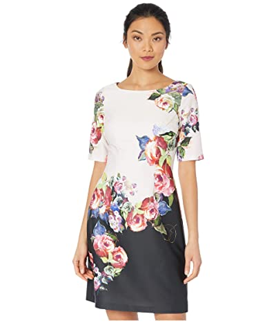 Adrianna Papell Rose Printed A-Line Dress (Black Multi) Women