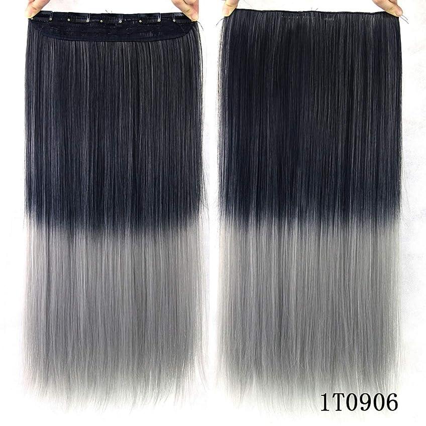 ずんぐりした道徳教育店員Koloeplf カラー化学繊維ヘアクリップヘアカーテンヘアエクステンショングラデーションカラーストレートヘアエクステンションピース (Color : Color 1T0906)