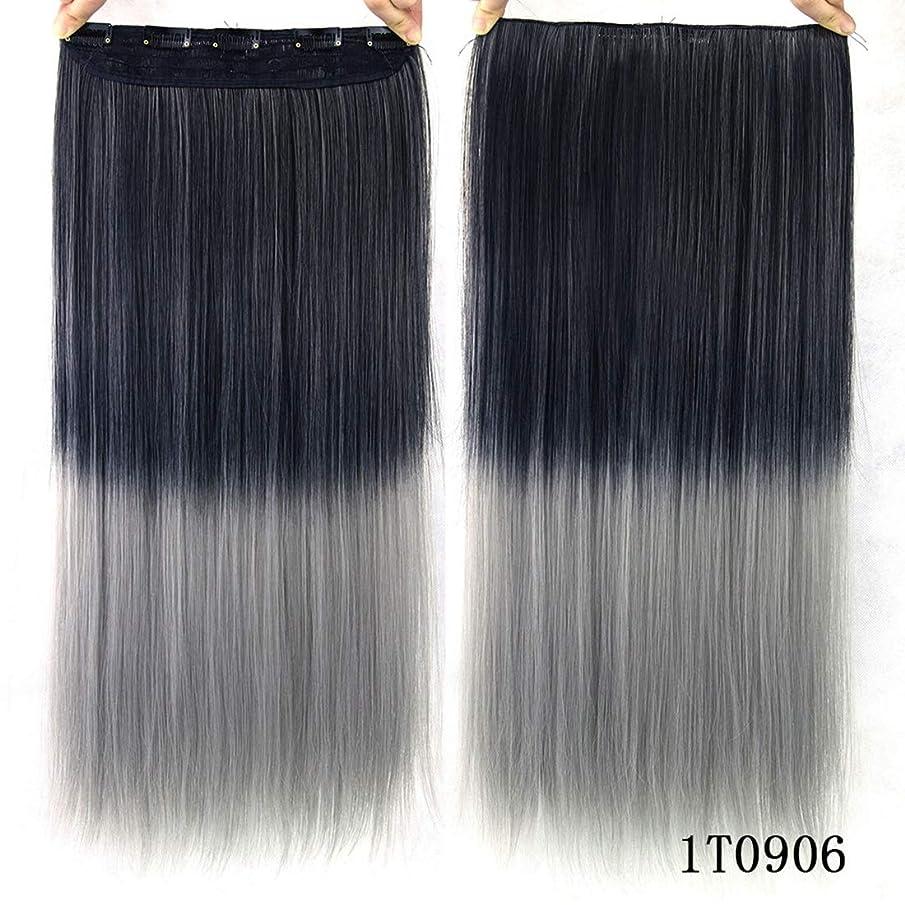 不足たっぷり行き当たりばったりKoloeplf カラー化学繊維ヘアクリップヘアカーテンヘアエクステンショングラデーションカラーストレートヘアエクステンションピース (Color : Color 1T0906)