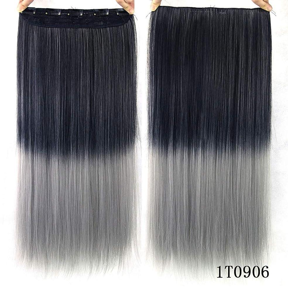 お願いします連想ビルマKoloeplf カラー化学繊維ヘアクリップヘアカーテンヘアエクステンショングラデーションカラーストレートヘアエクステンションピース (Color : Color 1T0906)
