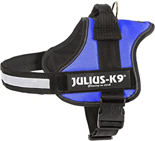 Julius-K9 Powerharness, blue, Size  0