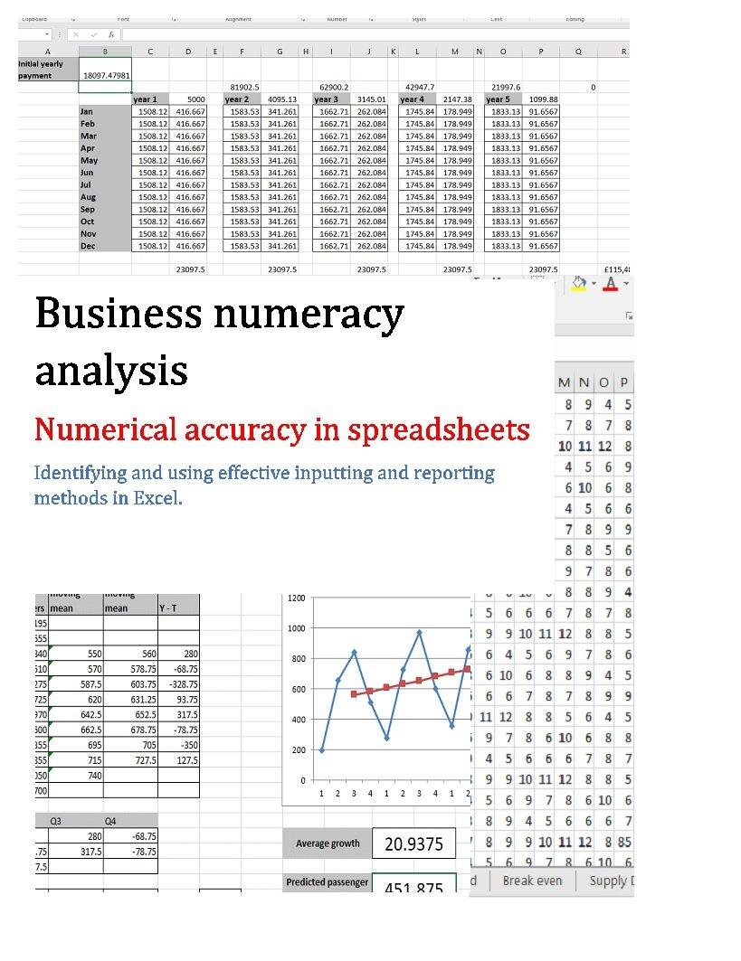 Businiess Numeracy Analysis: Numeracy accuracy in spreadsheets (Business numeracy analysis Book 1)