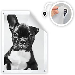 GoodHangups Damage Free Magnetic Poster and Picture Hangers Reusable Works on Any Wall As..