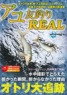 SURFAAACE(サーフェース) アユ友釣りREAL(リアル)