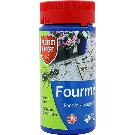 PROTECT EXPERT FOURPOUD250, Anti-Fourmis Poudrage   Jusqu'à 75m2 traités, Action Choc et Protection Longue durée, 250 GR