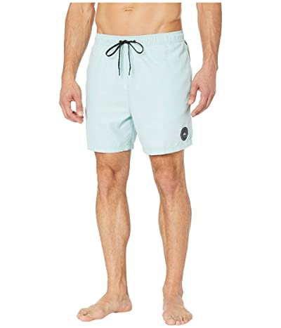 Quiksilver Everyday Volley 17 Boardshorts (Pastel Turquoise) Men