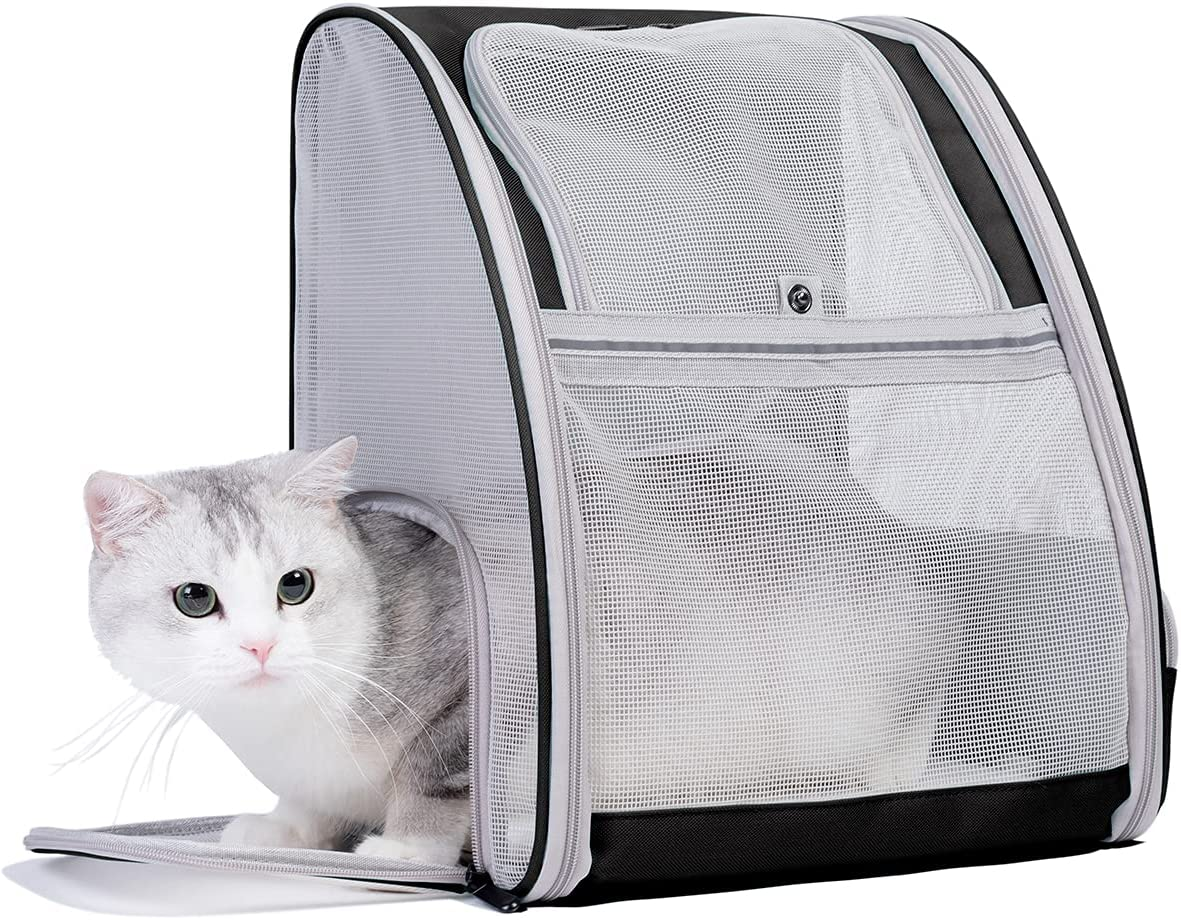 LAIRIES Pet Carrier Backpack for Cats 1 year warranty Fully Small Sale price Puppies and V