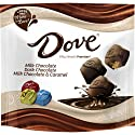 Dove Promises Variety Mix Chocolate Candy 15.8-ounce Bag, 15.8 Oz