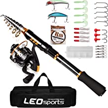 ZasLuke Telescopic Fishing Rod and Reel Combos Set, Full Kit Spinning Fishing Gear Organizer for Travel Saltwater Freshwater with Fishing Carrier Bag Case
