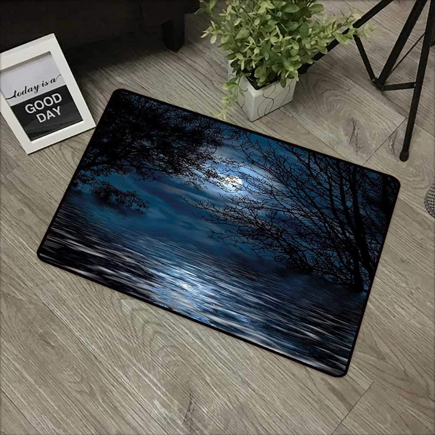 Buck Haggai Indoor Outdoor Floor Mats Night Sky,Witchcraft Spell Ceremony Atmosphere Forest Full Moon Branches Image,Light Blue and Black,for Indoor Outdoor Easy Clean Entry Way,30