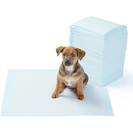 24x7 eMall 50 Pcs Puppy Training Pad ~ Pee Pads Potty Training (Regular 45 X 60 CMS, 50)