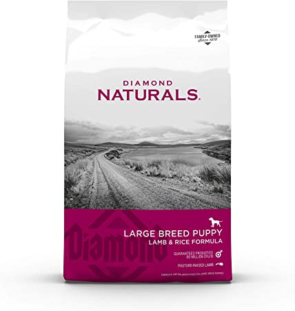 Diamond Naturals Premium Large Breed Formulas Dry Dog Food | Chewy
