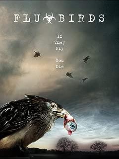 Best birds eating wood Reviews