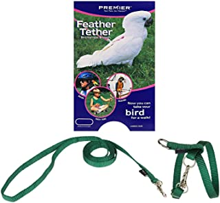 premier bird harness