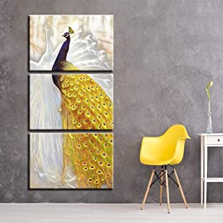 woplmh 3 Piece Wall Art Painting Golden Tail Peacock On Canvas Pictures Painting for Home Decoration Print -40x60cmx3/ no Frame