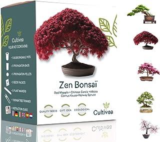 Cultivea Mini - Klaar om te groeien Kit Bonsaï - Kwaliteitszaden - Tuinieren en decoreren - Cadeau-idee (Rode Appel, Chine...