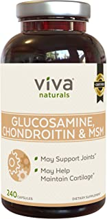 Glucosamine Chondroitin MSM Joint Supplement | Triple Strength Joint Support for Men and Women, 240 Capsules