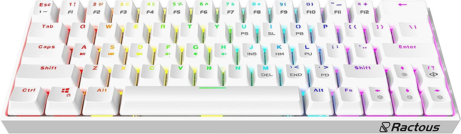 Ractous RTK63 60% Mechanical Gaming Keyboard True RGB Backlit Type-C Wired ABS doubleshot keycap 63Keys Portable Mini Ultra-Compact Keyboard with Full Key Programmable-White (Red Switch)