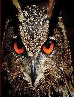 Hoot Hoot Hooray: Owl Journal   Owl Notebook book   Owl gifts for women men boy girl kids gift   hoot owl gifts for kids, ...