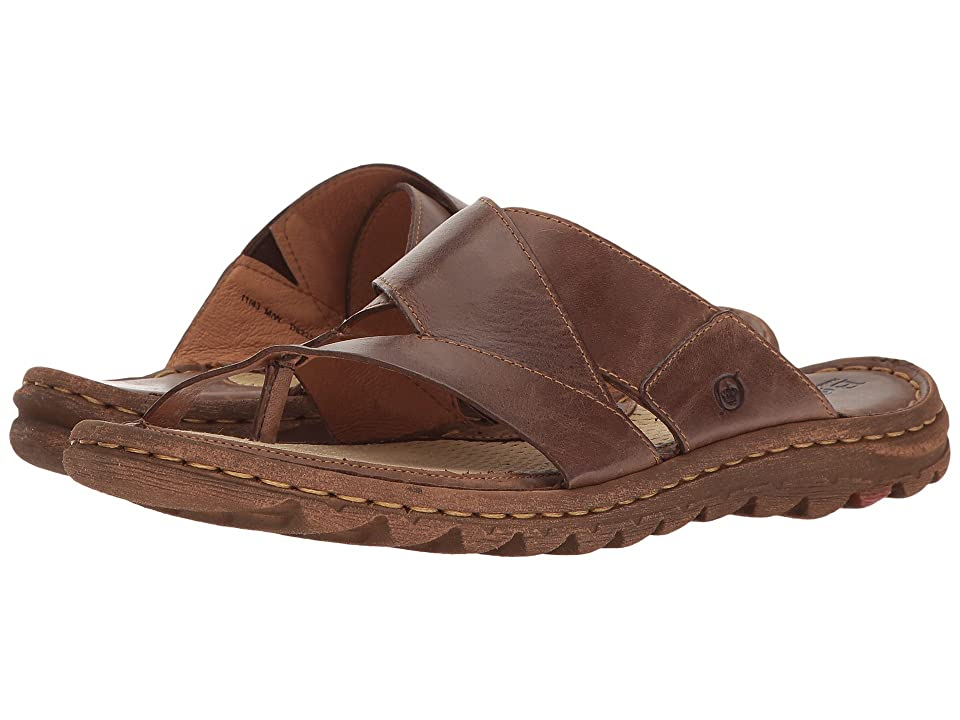 Born Sorja (Dark Brown Full Grain) Women