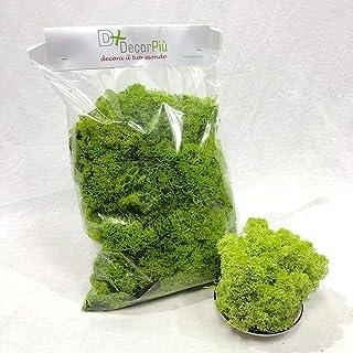 DecorPiù' Muschio E LICHENE STABILIZZATO: Muschi e licheni sfusi stabilizzati - Busta gr 500 (Verde Mela)