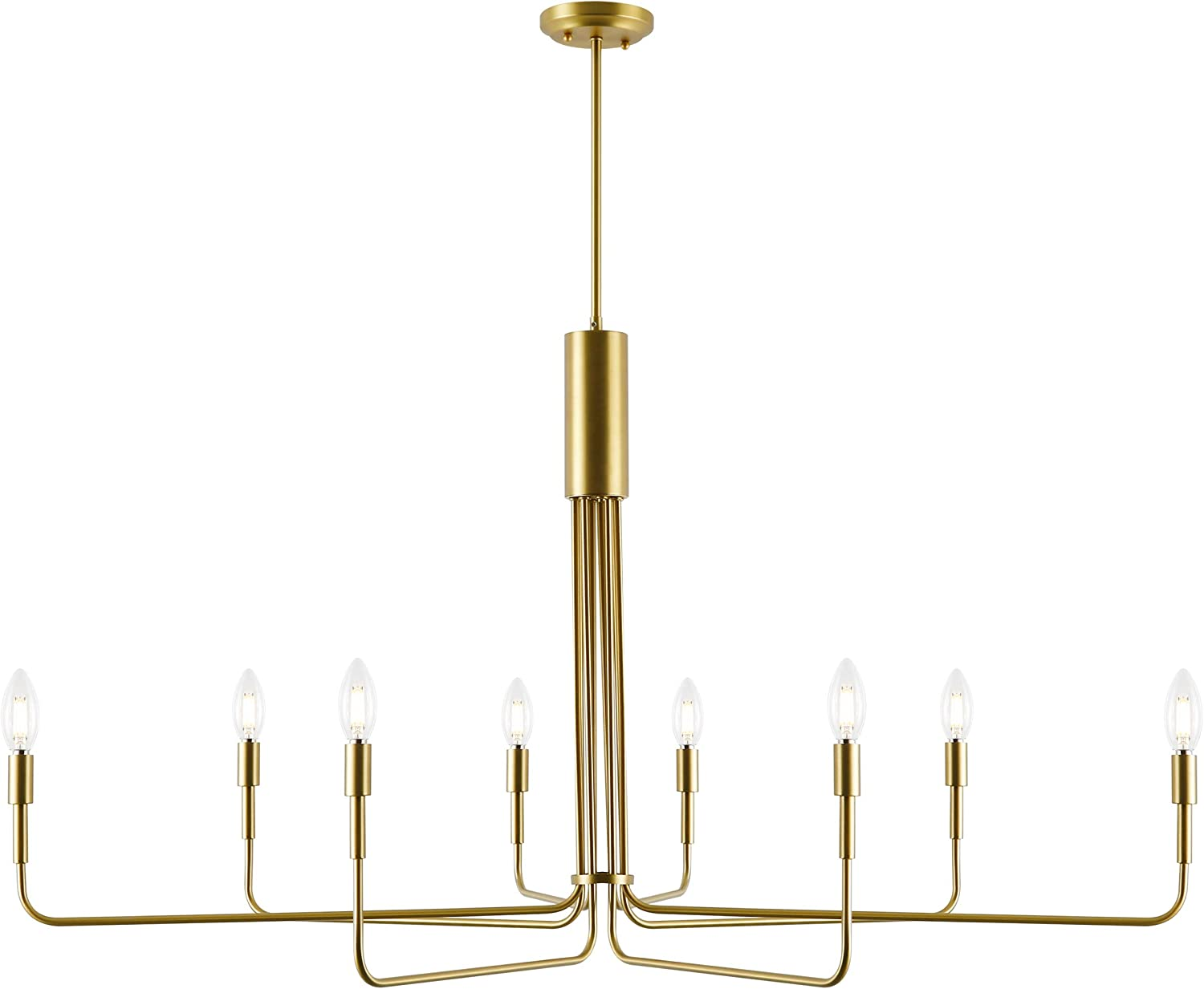 Light Albuquerque Mall Society LS-C317-BB Bella Brass Brushed 8-Light Chandelier excellence