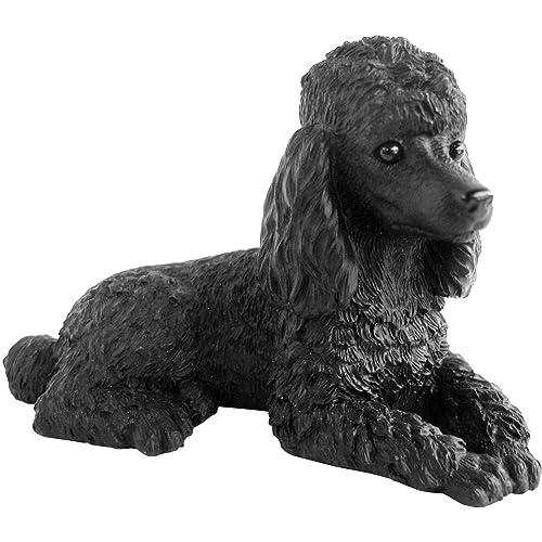 Poodle Art: Amazon com