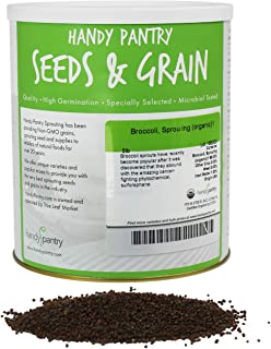 Organic Broccoli Sprouting Seeds By Handy Pantry - 5 Pound Resealable Can ~720,000 Seeds - Bulk Non-GMO Broccoli Sprouts S...