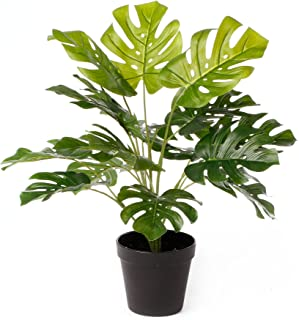 Cooper & Co. Artificial Botatnica Monstera Potted Plant, 47 cm