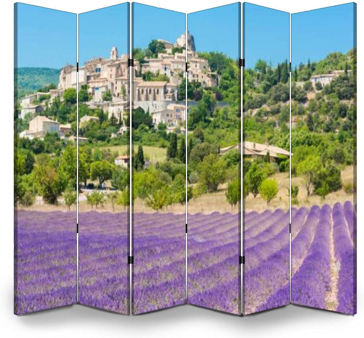 Dola-Dola 6 Panel Screen Room Rotonde Folding Simiane Bargain sale Divider la Low price